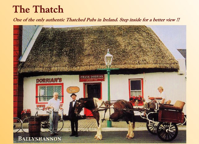The_Thatch